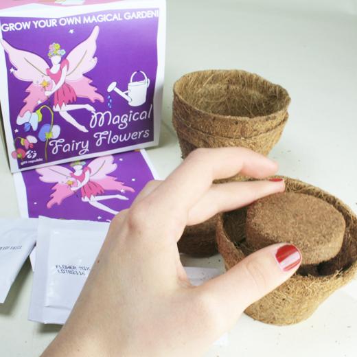 Semeia e Vê Crescer: Flores Mágicas