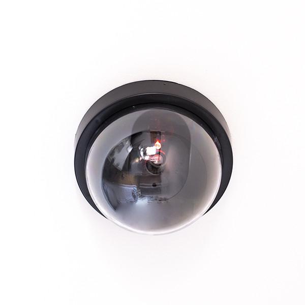 Câmara de Videovigilância Falsa