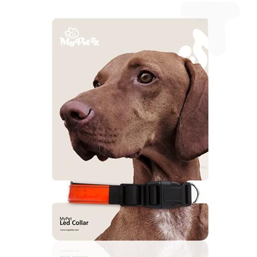 Coleira para Cão LED