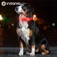 Collar para Perro LED