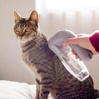 aspirador, animais, para animais, cão, gato, pêlo, vistonatv, Top10Julho14, DIY, Dia da Poupanca