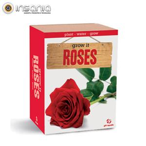 Grow It: Rosas