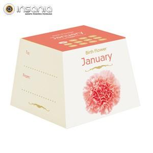 Flores Cumpleaños - Enero