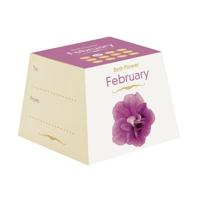Flores Cumpleaños - Febrero