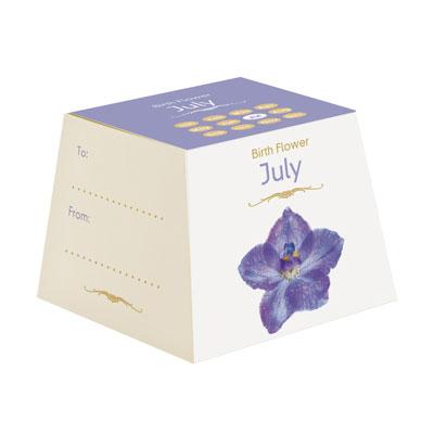 Flores Cumpleaños - Julio