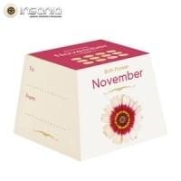 Flores Cumpleaños - Noviembre