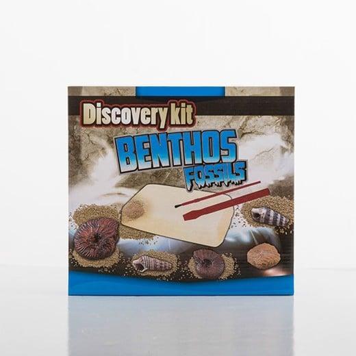 Kit Descoberta Arqueologia
