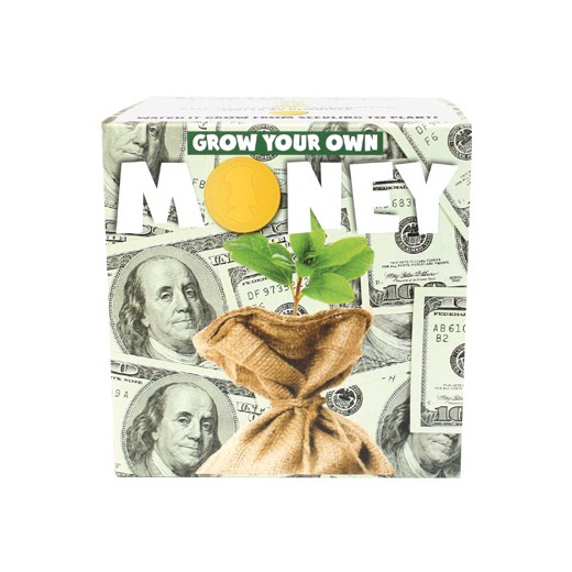 Semeia e Vê Crescer: Dinheiro