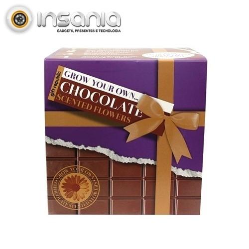 Semeia e Vê Crescer: Chocolate