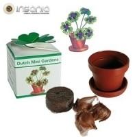 Boa Sorte, Jardinar, Plantar em casa, Primavera, Para mãe, Amigo Secreto, Planta em Casa