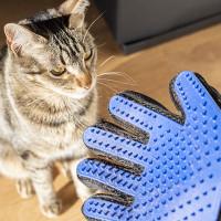 Escova Luva para Animais de Estimação