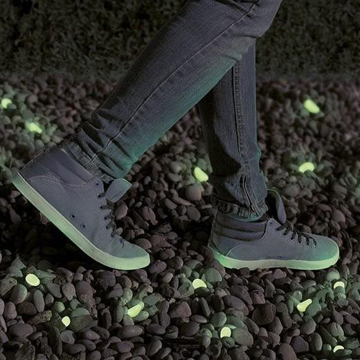 Pedras Decorativas Fluorescentes