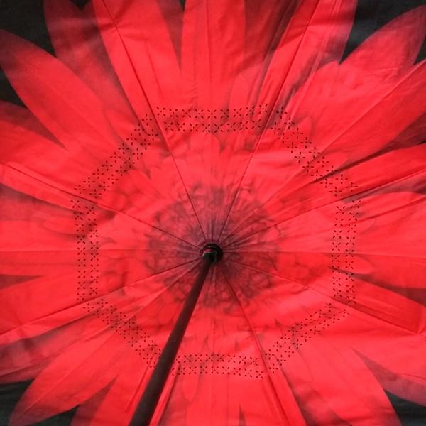 Flor vermelha 2