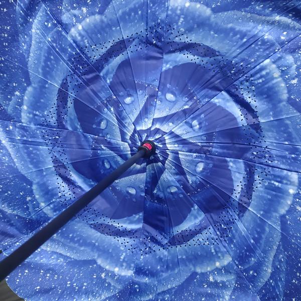 Flor azul pingos