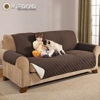 sofá, casa, sala, textiles