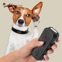 Comando Ultrassónico para Treinar Animais de Estimação