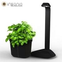 Vaso Genie Kitchen Garden Tregen Negro