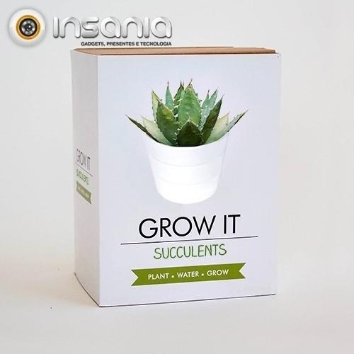 Grow It: Suculentas
