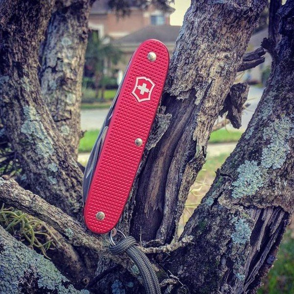 Canivete Victorinox Pioneer Edição Limitada Alox 2018